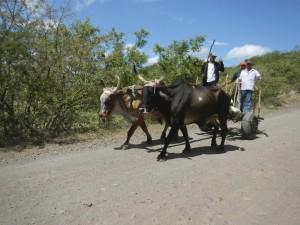 Nicaragua Day 4 - 067